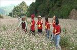 Du lịch nội địa đã góp phần phục hồi du lịch Việt Nam