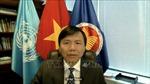 HĐBA: Việt Nam sẵn sàng hỗ trợ cho các quốc gia hậu xung đột ở châu Phi