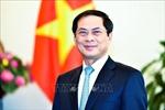 Tham khảo chính trị cấp Thứ trưởng Ngoại giao lần thứ VI Việt Nam - Cuba