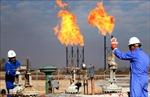 Giá dầu thế giới phiên 8/3 đảo chiều đi xuống