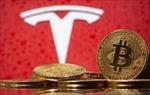 Bitcoin lao dốc,các đồng tiền kỹ thuật số khác chịu sức ép