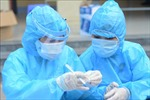 Tiếp nhận ủng hộ của kiều bào cho công tác phòng, chống dịch COVID-19