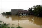 Hỗ trợ người dân Quảng Nam, Quảng Ngãi khắc phục hậu quả mưa lũ