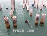 Tàu cổ đắm ở cảng Dung Quất chỉ có giá trị nghiên cứu khoa học