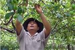 Chương trình Tự hào Nông dân Việt Nam 2018: Xây dựng hình mẫu nông dân thời hội nhập