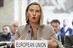 EU muốn sớm áp dụng cơ chế thương mại không sử dụng đồng USD với Iran
