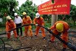 'Ốc đảo' cuối cùng tỉnh Trà Vinh hòa điện lưới quốc gia