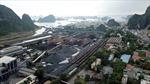 Quảng Ninh lùi thời hạn chấm dứt hoạt động Nhà máy Tuyển than Nam Cầu Trắng