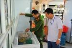 Tăng tính phối hợp liên ngành trong thanh, kiểm tra an toàn thực phẩm