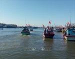 Giải pháp ngăn chặn đánh bắt thủy sản trái phép