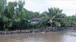 Sạt lở bờ sông, xói lở bờ biển diễn biến phức tạp tại Kiên Giang