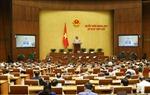 Kỳ họp thứ 7, Quốc hội khóa XIV: Thảo luận 3 dự án Luật