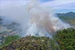 Khởi tố 3 đối tượng đốt tổ ong lấy mật gây cháy rừng ở Hương Sơn, Hà Tĩnh