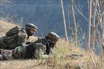 Lại đấu súng qua biên giới Ấn Độ và Pakistan