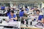 Xuất khẩu của Việt Nam sang Séc tăng 8,96%