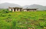 'Hoang phế' dự án khu tái định cư 85 tỷ đồng