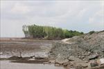 Sạt lở đê biển Sóc Trăng ngày càng nghiêm trọng