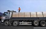 Liên hợp quốc kéo dài miễn trừng phạt đối với viện trợ nhân đạo cho Triều Tiên