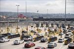 Chính phủ Mỹ từ chối giao báo cáo điều tra ô tô nhập khẩu cho Quốc hội