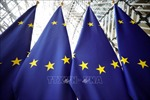 EU, Trung Quốc và 15 nước thiết lập cơ chế tạm thời giải quyết các kháng cáo tranh chấp thương mại
