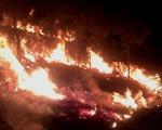 Huy động hàng trăm người chữa cháy rừng trên núi Đại Bình, Lâm Đồng