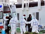 Mexico xác nhận trường hợp nhiễm SARS-CoV-2 đầu tiên