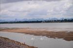 MRC hối thúc các nước ở khu vực sông Mekong giải quyết lưu lượng dòng chảy thấp