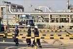 OPEC + bàn thảo về khả năng cắt giảm sản lượng dầu 10 triệu thùng/ngày