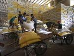 Tuần qua, giá lúa gạo ổn định, giá tiêu tiếp tục đà tăng