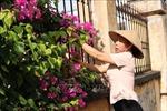 Hiệu quả từ mô hình 'Khu dân cư không rác thải' của phụ nữ Bắc Ninh