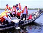 Thành lập Khu bảo tồn thiên nhiên đất ngập nước Tam Giang - Cầu Hai