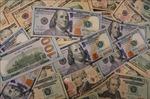Giới phân tích: Sự thống trị của đồng USD sẽ yếu đi trong năm tới