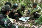 Theo chân 'biệt đội phá bẫy', cứu thú tại Khu bảo tồn thiên nhiên Sơn Trà