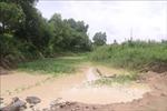 Xử phạt công ty nhiều lần gây ô nhiễm môi trường tại huyện Xuyên Mộc