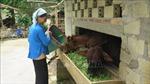 Lào Cai huy động trên 2.470 tỷ đồng xây dựng nông thôn mới