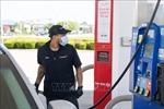 Giá dầu Brent lên 44,43 USD/thùng
