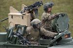 Đức lên kế hoạch tập trận quy mô lớn với Mỹ