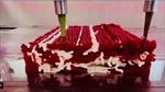 Bước tiến trong sản xuất thịt nhân tạo