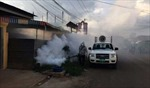 Campuchia cảnh báo dịch sốt virus Chikungunya bùng phát tại tỉnh biên giới giáp Việt Nam