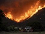 Hàng trăm hộ dân phải sơ tán do cháy rừng ở Los Angeles