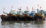 Khẩn trương hoàn thành lắp đặt thiết bị giám sát hành trình tàu cá