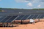 Khánh thành Nhà máy Điện mặt trời Hà Đô Ninh Phước có vốn đầu tư hơn 1.000 tỷ đồng