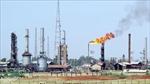 Nối lại hoạt động khai thác dầu mỏ tại Libya