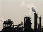 Trung Quốc hoan nghênh 'mục tiêu xanh' của Nhật Bản