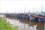 Bình Định ứng cứu 8 tàu, thuyền trên biển, di dời hàng nghìn hộ dân