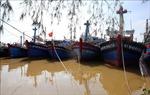 Quảng Trị: Khẩn trương di dời hàng chục nghìn người dân để tránh ngập lụt, bão số 9