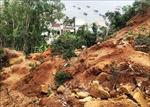 Bình Định: Xây dựng khu tái định cư cho hộ dân vùng sạt lở núi Gành