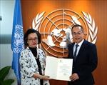 Phó Tổng thư ký LHQ, Thư ký điều hành ESCAP khẳng định mong muốn tăng cường hợp tác với Việt Nam