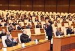 Chủ tịch Quốc hội chúc Tết nguyên lãnh đạo Quốc hội, cán bộ nghỉ hưu của Văn phòng Quốc hội