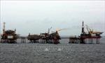 Vietsovpetro, PVEP, PVOIL và BSR hợp tác cung cấp dầu thô và tiêu thụ sản phẩm